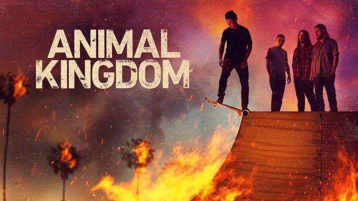 Animal Kingdom - Episode 5.05 - Family Business - Press Release