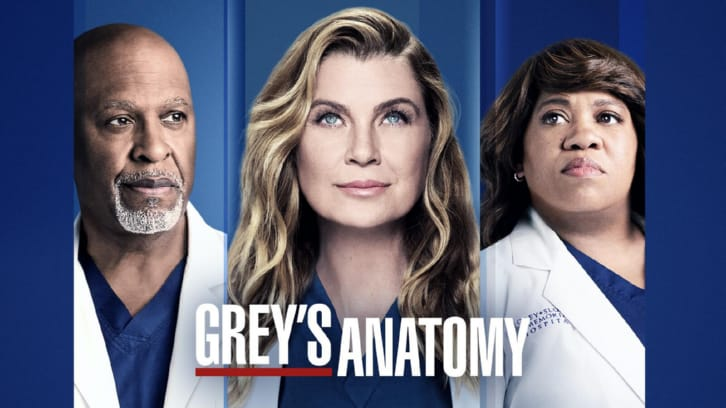 Grey's Anatomy - Episode 17.14 - Look Up Child - Press Release