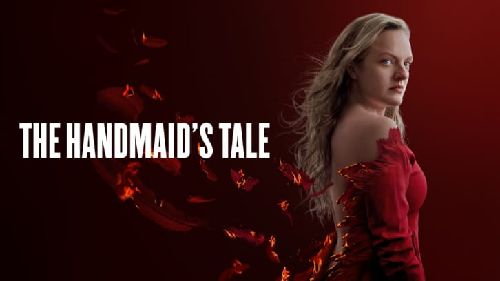 The Handmaid's Tale - Pigs - Review